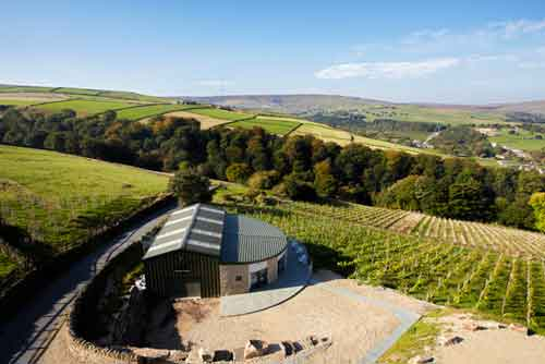 holmfirth vineyard | svetling estate | lightfoot wines | english wine