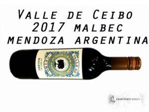 wine from argentina | malbec | mendoza wine