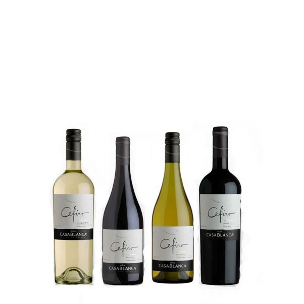 mixed wine case | chilean wine | casablanca valley | wine gift | lightfoot wines
